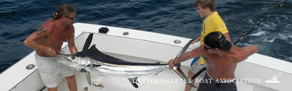 charter fishing pic 1