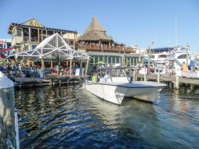 Have you Visited the Destin Fishing Rodeo Yet?
